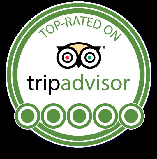 TripAdvisor-Logo-Plain